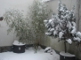 Čajová záhradka v zime